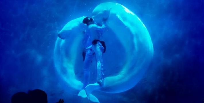 海昌海洋公园门票_上海海昌海洋公园门票,上海海昌海洋公园门票预订,上海海昌海洋 ...