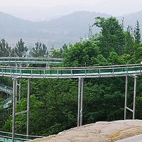 绵阳游仙太乙仙山植物园
