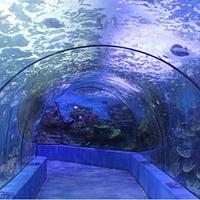 信阳龙都海洋馆