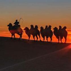 宝古图沙漠旅游区