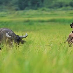 桂林全州大碧头国际旅游度假区