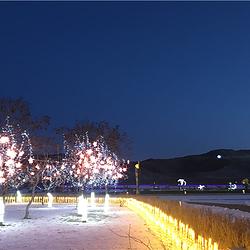 龙源湖灯会