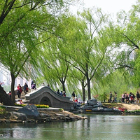 玉渊潭公园