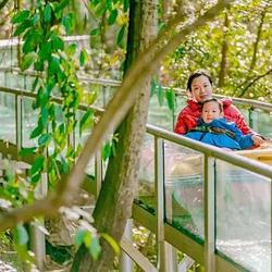 新余凤凰湾森林乐园
