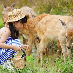 大碧头国际旅游度假区