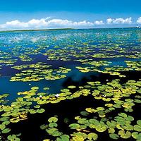 莲海世界旅游风景区