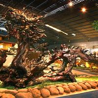 森晖自然博物馆