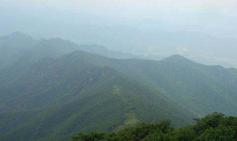 千松坝国家森林公园