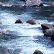 武夷山青龙大瀑布
