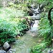 玉舍国家森林公园