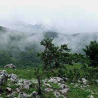 百里荒生态旅游区