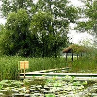 扬州宝应湖国家湿地公园