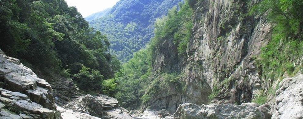 双峰森林公园