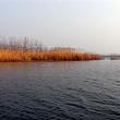 沱湖湿地风景区