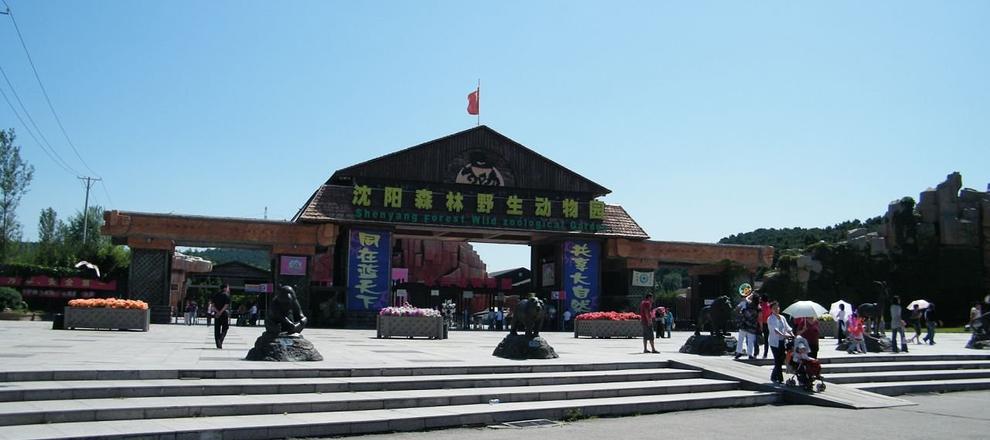 沈阳森林野生动物园成人票(含沈阳棋盘山)
