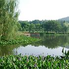 武汉市马鞍山森林公园