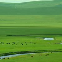 科尔沁大草原