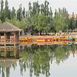 乌海植物园