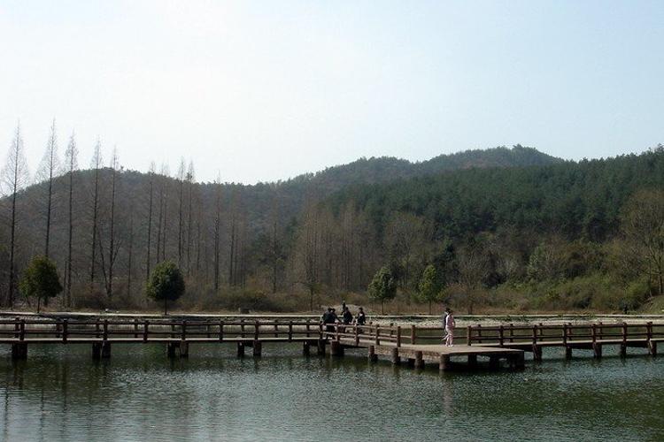 黎坪国家森林公园旅游