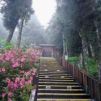 太平山森林游乐区