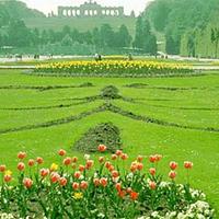东莞植物园(原绿色世界)