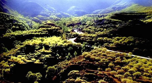 清徐白石沟生态旅游区