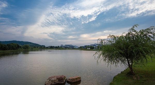 九龙湾乡村家园