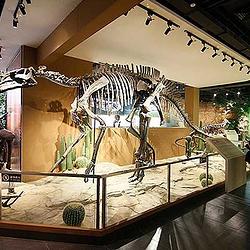 深海恐龙馆