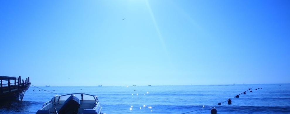 乘着风出海