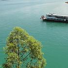 万绿湖游船