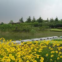 忻州凤凰山
