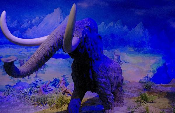 国子监 太平洋海底世界 鹫峰森林公园 北京文博交流馆 北京古代钱币