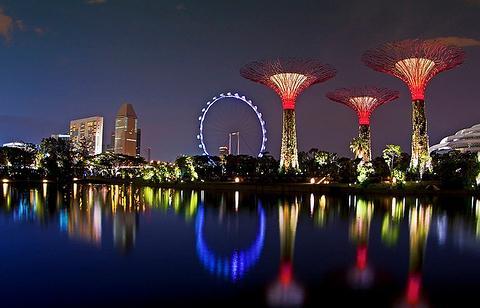 新加坡滨海湾花园旅游景点大全,新加坡滨海湾花园旅游玩法攻略 去哪