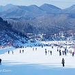 天津动物园滑雪场