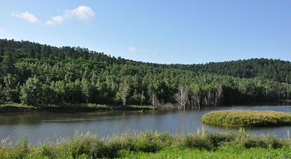 大亮子河国家森林公园