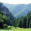 吐鲁沟国家森林公园