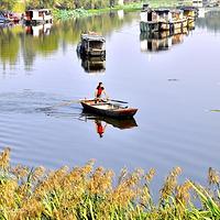 焦岗湖国家湿地公园
