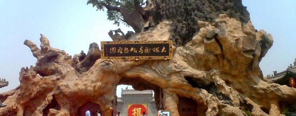 罕见的大型古槐真根---根雕大门