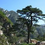 天水石门山