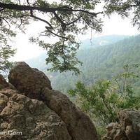 肥城牛山国家森林公园
