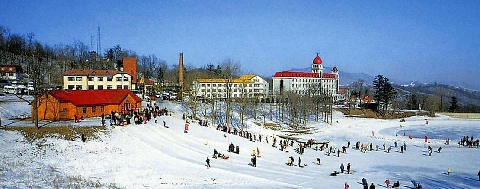 设有雪具出租店和滑雪学校,山顶、山腰、山下设有多处酒吧、快餐店、购物中心、红十字救护站,以及国际国内长途电话及卫星电视等服务配套设施。