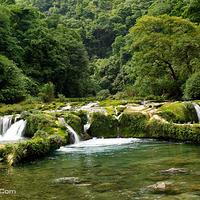 茂兰自然保护区