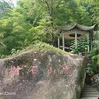 灵山石树景区
