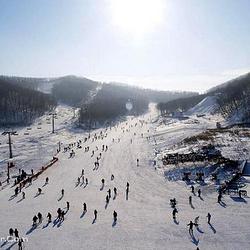 东岭生态滑雪场