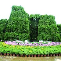 兰州植物园