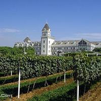 张裕国际葡萄酒城旅游区