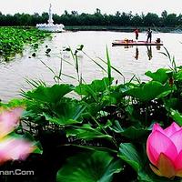 林海生态博览园