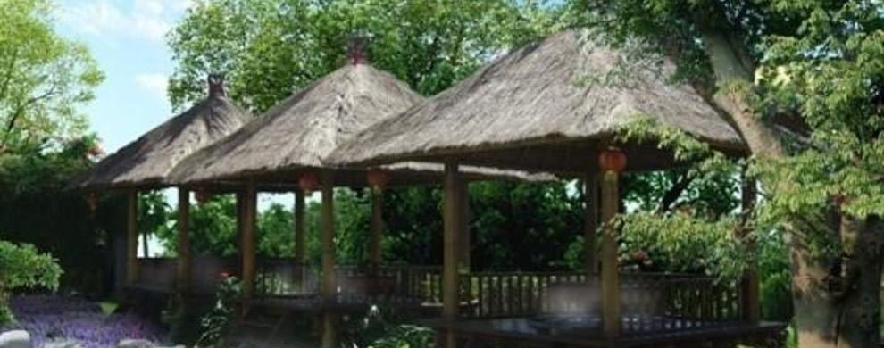 亚热带温泉