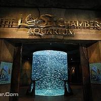 失落的空间水族馆