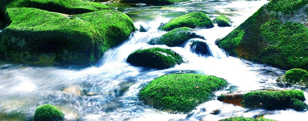 溪水可直接饮用